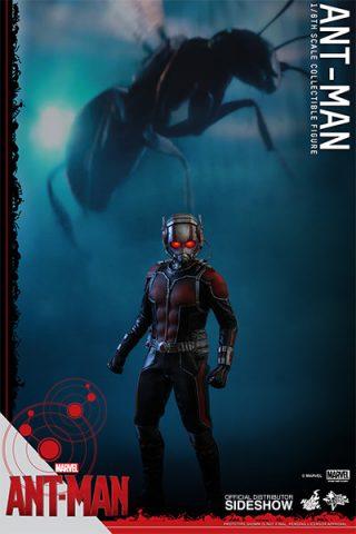902448-ant-man-06