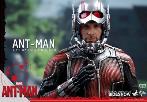 902448-ant-man-22